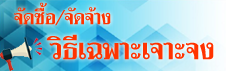 bannerpao01