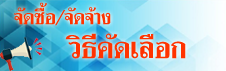 bannerpao02